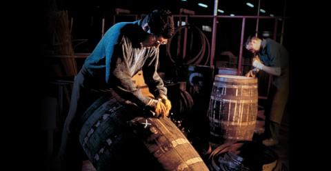 Al-lavoro-nella-distilleria-Glenfiddich-480x248